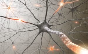 neuronas, insomnio