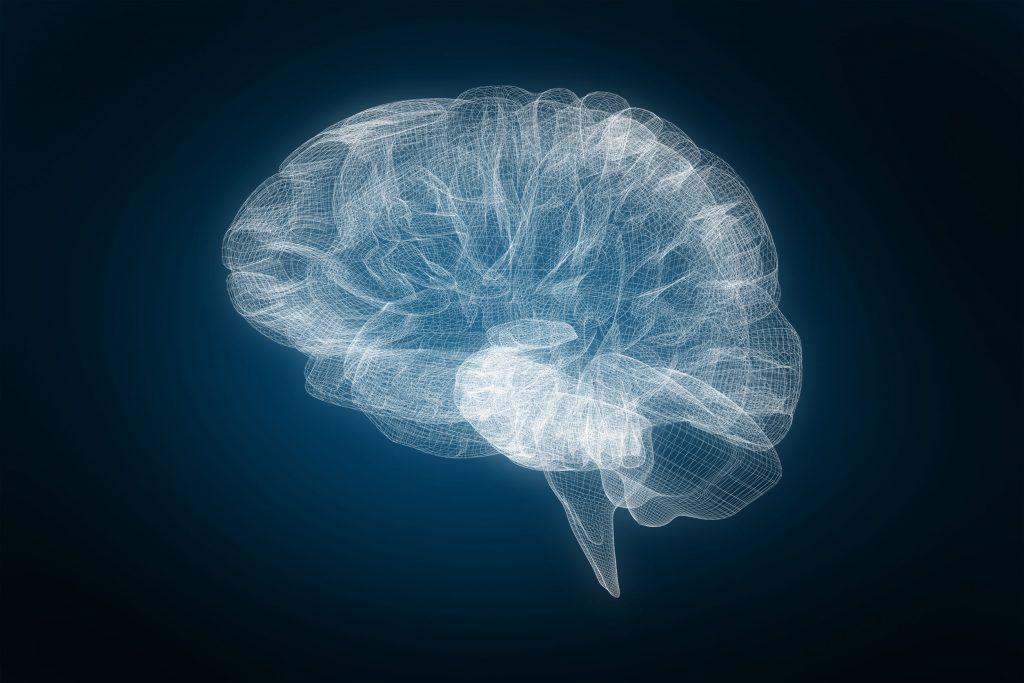 cerebro, 3d, ecografia, transcraneal, sustancia negra