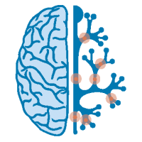 Neuropediatra
